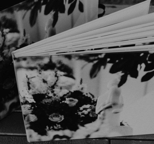 Blog IpsisPro album-giseli-hero-640x600 Como montar um portfólio de fotografia? Te damos duas receitas para que você consiga fechar negócio na quarta foto!