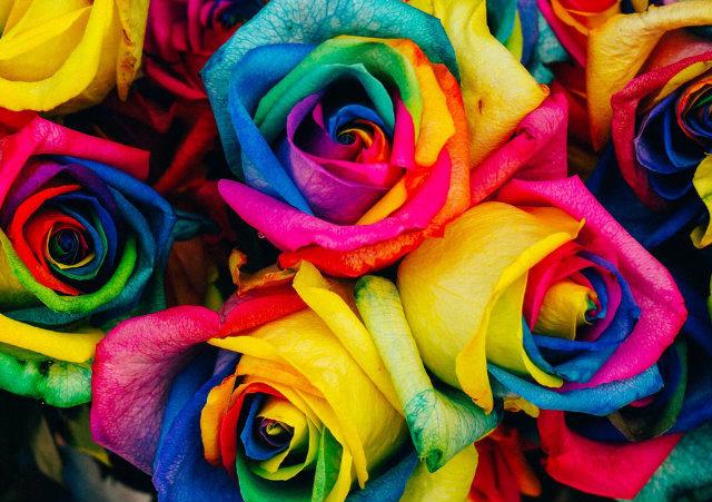 Blog IpsisPro combinação-de-cores-na-fotografia-640x451 Aprenda a usar a combinação de cores na fotografia para emocionar seus clientes