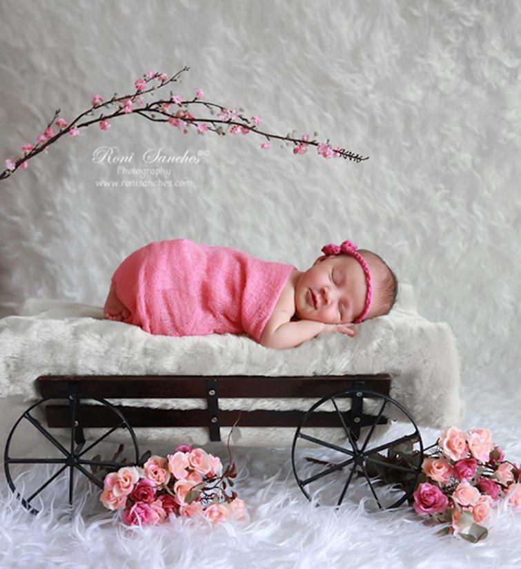 Blog IpsisPro carroça Ideias para ensaio newborn | Conheça fontes de inspiração para fazer fotos mais originais