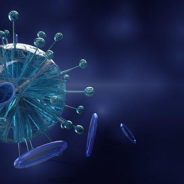 Blog IpsisPro 1762-640x640 Coronavírus e a fotografia: caminhos e cuidados