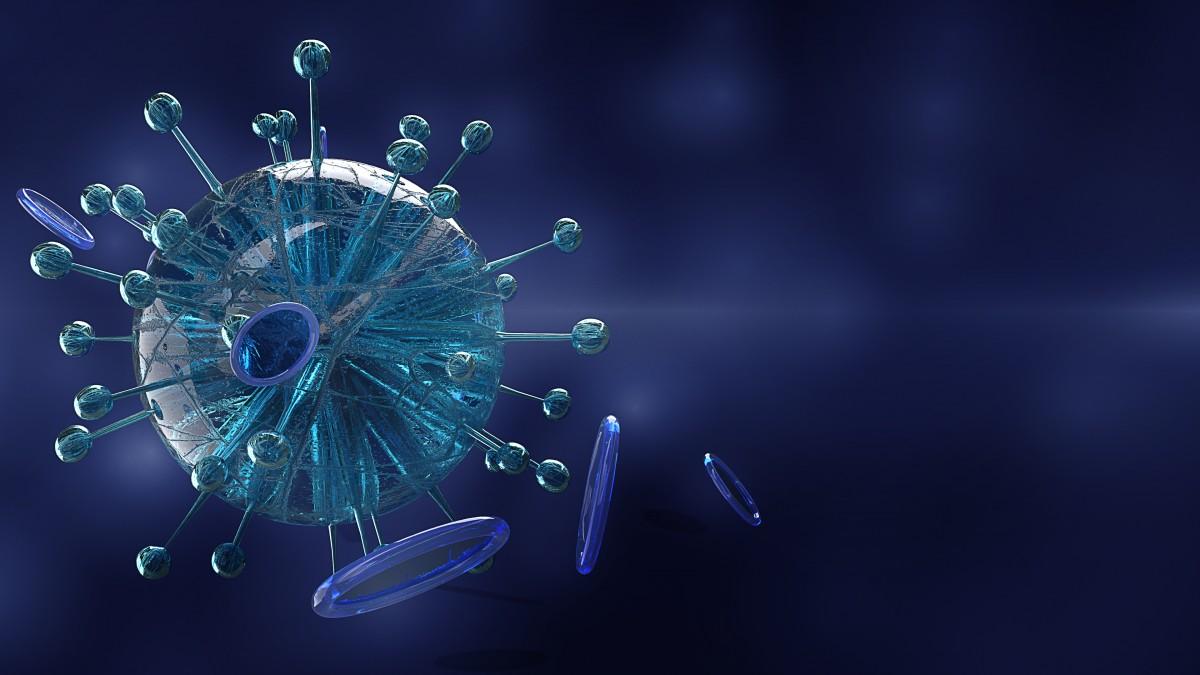Blog IpsisPro 1762 Coronavírus e a fotografia: caminhos e cuidados