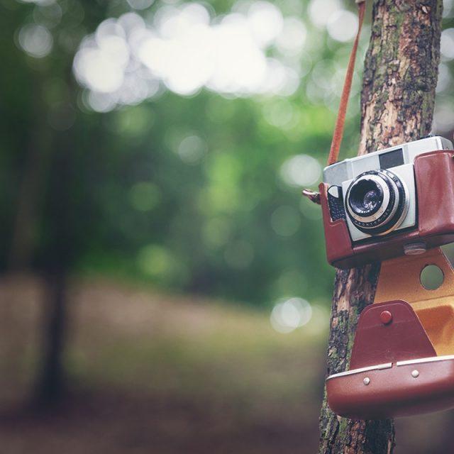 Blog IpsisPro 0-640x640 De volta ao passado - O charme das câmeras analógicas