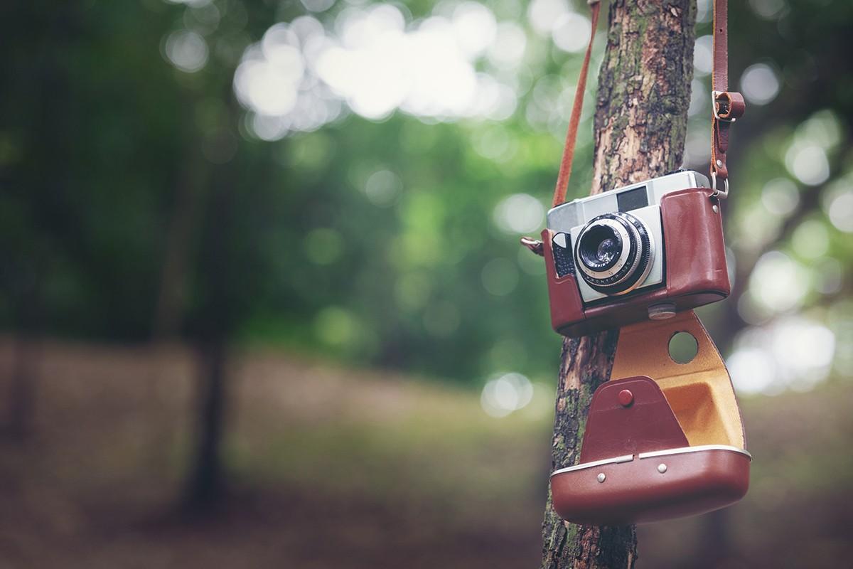 Blog IpsisPro 0 De volta ao passado - O charme das câmeras analógicas