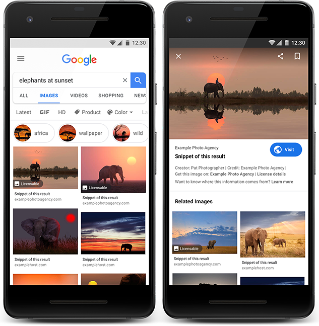 Blog IpsisPro licensable-images Google Imagens insere selo licenciável para ajudar fotógrafos a vender