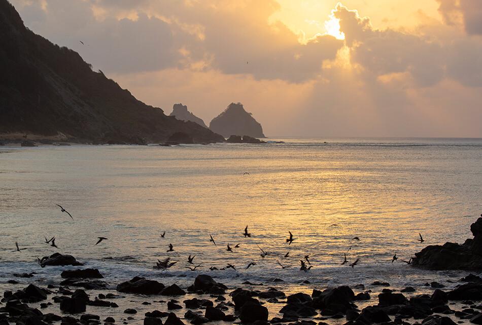 Blog IpsisPro Fotografia-no-Brasil-03 Fotografia no Brasil: Sete lugares perfeitos para fotografar