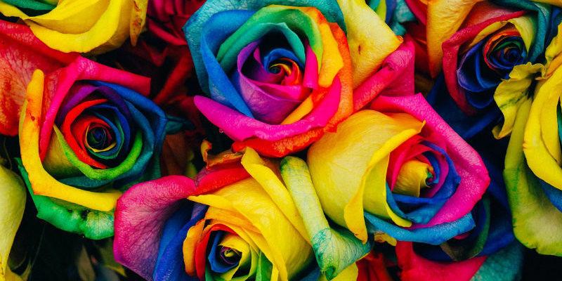 combinação de cores na fotografia